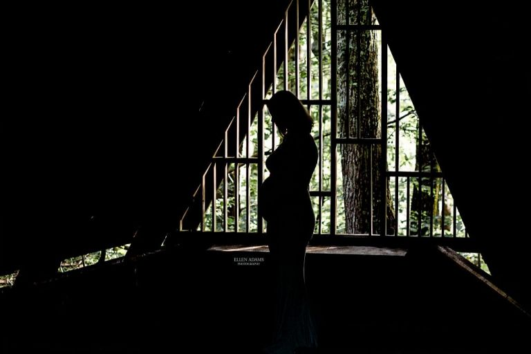 Ellen Adams Photography photographed the silhouette of a pregnant mom.